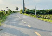 Mở bán dàn F0 cho khách đầu tư mặt tiền đường nhựa chính 10m xã Láng Dài- Đất Đỏ - BRVT