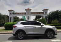 Bán nhà mặt tiền kinh doanh - 97m2 - Tân Sơn, P12, Gò Vấp - 11,49 tỷ