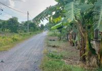 Bán đất 1/ Nguyễn Thị Nê, Phú Hòa Đông, Củ Chi, 3,7 tỷ. 0916226697