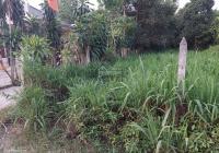 Bán đất 2/ ngắn thông Tỉnh Lộ 15, xã Phú Hòa Đông, đường LG 12m, DT 461.9m, thổ 300m2, chỉ 2 tỷ 500