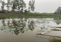 Chính chủ cần bán 1362m2 đất đã có tường bao xung quanh views hồ thoáng mát tại Kim Sơn Sơn Tây, HN