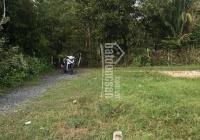Đất vị trí đẹp đường ô tô rộng rãi ngay Tỉnh Lộ 15 - Phú Hòa Đông, nở hậu 12m và 100m2 thổ cư, SHR