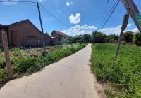 Chỉ 350 triệu có ngay đất thổ cư 100% tại trung tâm hành chính Ninh Sơn