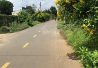 Đất Xã Trí Phải, Huyện Thới Bình - 1000m2 Thổ Cư