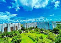 Bán nhanh căn hộ 1PN ở liền quận Bình Tân 50m2, giá 29tr/m2, LH 0938330378