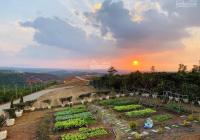 Sở hữu ngay đất nghỉ dưỡng Bảo Lộc giá siêu rẻ, sổ có sẵn, tặng full thổ cư, đất xây dựng tự do