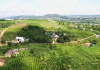 Bán đất chính chủ huyện Lâm Hà, đất nghỉ dưỡng ven TP Đà Lạt đã có sổ và thổ cư. Giá 2,2tr/m2 TL