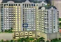 Bán căn hộ view sông Swan Bay Đại Phước, tầng 7, căn 1 phòng ngủ 50m2, Zone 6. Nhận nhà 6/2022