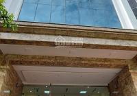 Building 9 tầng có hầm MP Đào Tấn - Liễu giai cạnh Lotte, DT 180m2 giá 138 tỷ