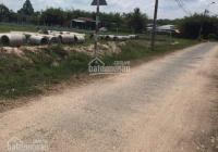 Đất Bến Cát sổ hồng chính chủ, đường 8m cách ĐT 741 đúng 1km thông KCN
