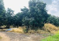 Đất giá tốt để đầu tư hơn 1 sào vị trí ngay mặt tiền đường Nagoa gần cầu La Ngà Đồng Nai