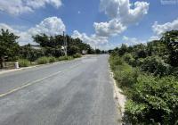 Định cư nước ngoài cần bán lô đất vườn 8.100m2 tại Xã Bình Thạnh Trung, huyện Lấp Vò