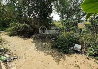 Bán gấp đất thổ cư 100% xã Thuận Thành - Huyện Cần Giuộc - Long An