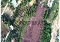 7500m2 Đất cần bán gấp, gần bãi Ông Lang, Vũng Bầu