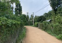 B130 - bán đất 3326m2 mặt tiền rất dài 134m gần rừng nguyên sinh Xà Bang, Châu Đức, BRVT giá 5 tỷ