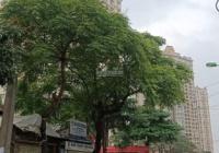 Bán gấp mặt phố Nguyễn Hoàng Tôn 2 mặt tiền 158m2 MT 5.3m đường ô tô tải tránh, chỉ 35.5 tỷ Tây Hồ