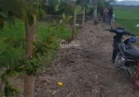 Bán gấp lô đất giá chính chủ tại xã Ninh Quang, Thị xã Ninh Hòa