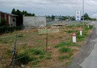 Bán đất trên quốc lộ N2B xã Định An, Lấp Vò, Đồng Tháp