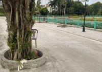 Cần bán 124m2 đất Tân Phong, Thụy Phương, ô tô tải vào nhà, liên hệ: 0979411156
