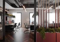 Văn phòng 150m2 phố Trần Xuân Soạn mới xây dựng, có thang máy, khu vực trung tâm kinh doanh sầm uất