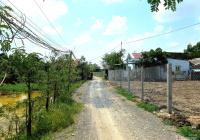 Bán gấp 994m2 đất lúa đường Long Phú, xã Tân Kim, HXH 4m, SHR, giá chỉ 2,45 tỷ. LH 0938 833 252
