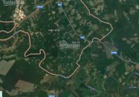 Bán đất 2hec, có 9000m2 SKC giá rẻ 25,999 tỷ, xã Vĩnh Hòa, Phú Giáo, BD, điện 3P, 2 container 40 đi