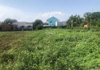 Đất đẹp 7000m2 xã Bình Lợi, Huyện Bình Chánh T7/2021