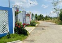 Bán 1187m2 đất nghỉ dưỡng cực hiếm tại Phước Hội - Đất Đỏ - BRVT. Bao tường rào 100%