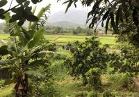 Chính chủ cần cắt bán 2750m2 đất view cánh đồng tại Khánh Thượng - Ba Vì - Hà Nội