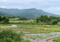 Bán gấp 1000m2 tuyệt đẹp gần hồ Đồng Tranh, tại Lương Sơn - Hoà Bình