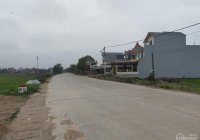 Cần bán lô mặt đường huyện DH72 địa phận xã An Mỹ - Quỳnh Phụ - Thái Bình