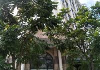 Cho thuê biệt thự tại khu 214 Nguyễn Xiển, DT 170m2, XD 120m2 * 5,5T, có thang máy. Giá 60tr/th