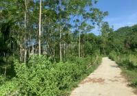 Cần bán lô đất có tổng DT 4490m2 full thổ cư, MT 50m đường bê tông rộng, view thoáng