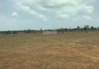 Bán gấp 1 số lô đất gần biển Hòa Thắng, giá tốt cho những ai thiện chí, SHR, LH: 0946023235
