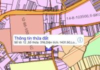Chính chủ bán đất tại Biên Hòa, diện tích 26x54m, đường rộng rãi, dân cư kín, LH 0917906879