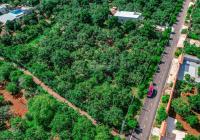 Chủ nhà kẹt tiền bán gấp lô đất Long Tân, MT QL 52, DT 500m2, giá 2 tỷ xx (0932.869.179)