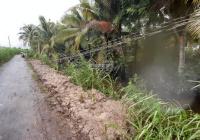 Bán đất cây lâu năm gần KCN Tân Hương, Tiền Giang