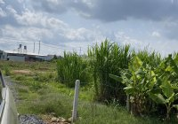 Bán lô đất đẹp hẻm Đinh Công Tráng, Xã Đại Lào, thành phố Bảo Lộc