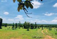 14.798m2 SHR xã Sông Bình, giáp suối dài đất trống, đầu tư dài hạn, giá chỉ 70k/m2