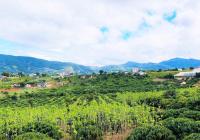Đẩy nhanh lô đất trung tâm xã Đông Thanh, Lâm Hà ven Đà Lạt, view nghỉ dưỡng cực đẹp, sổ sẵn thổ cư