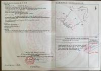 Mình chính chủ bán đất mặt đường lớn xe hơi vô tới 379tr/1000m2 TL LH 0938 600 986 Phi Nguyễn