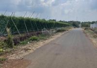 Chính chủ cần bán lô đất (62x40m) mặt tiền đường, tại Bàu Chinh, Châu Đức, BRVT