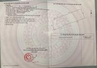 Cần bán 4144m2 xã Bình Tân, Bình Thuận cạnh bên Safari, đi DT716 vào thẳng đất, sổ đỏ riêng