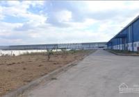 Chính chủ bán nhà máy đang hoạt động tại KCN VSIP, Bình Dương, đất 30000m2, nhà máy và kho 15000m2