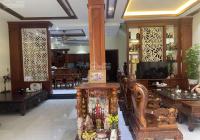Cần bán gấp biệt thự đẹp, đường Quách Văn Tuấn, khu K300, phường 12, Tân Bình. 25 tỷ