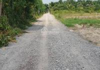Lô đất Phạm Thái Bường, Phước Khánh, đường ô tô đất CLN giá gốc cắt sổ mặt rạch 1000m2 giá 1,65tr/m