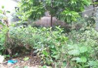 Bán 40m2 đất thị trấn Trạm Trôi, Hoài Đức, Hà Nội, mặt tiền 4m, vuông vắn, gần ô tô