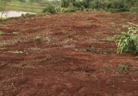 Cần tiền đầu tư nên bán miếng đất sát hồ