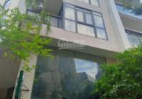 Bán nhà mặt phố Trần Đăng Ninh đường đôi 20m Quận Cầu Giấy, giá 19 tỷ 0987746782