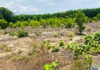Bán đất mặt tiền Nguyễn Huệ - ĐĐ - BRVT. DT: 998m2 (12x82) có 200m2 TC sát KCN Đất Đỏ